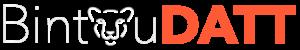 logo texte blanc bintoudatt